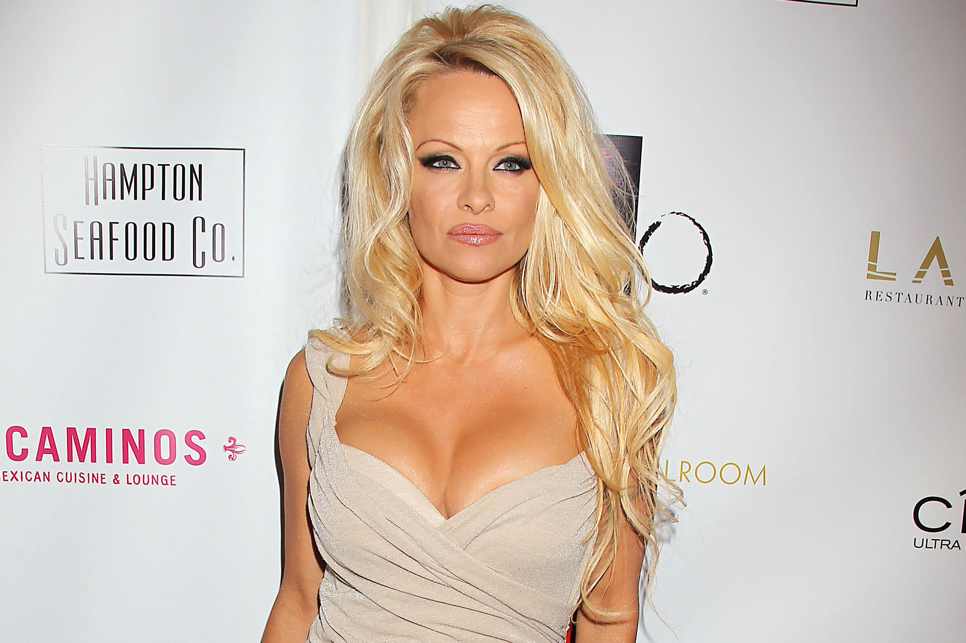 Pamela Anderson born July 1, 1967 (age 51) Pamela Anderson born July 1, 1967 (age 51) new photo