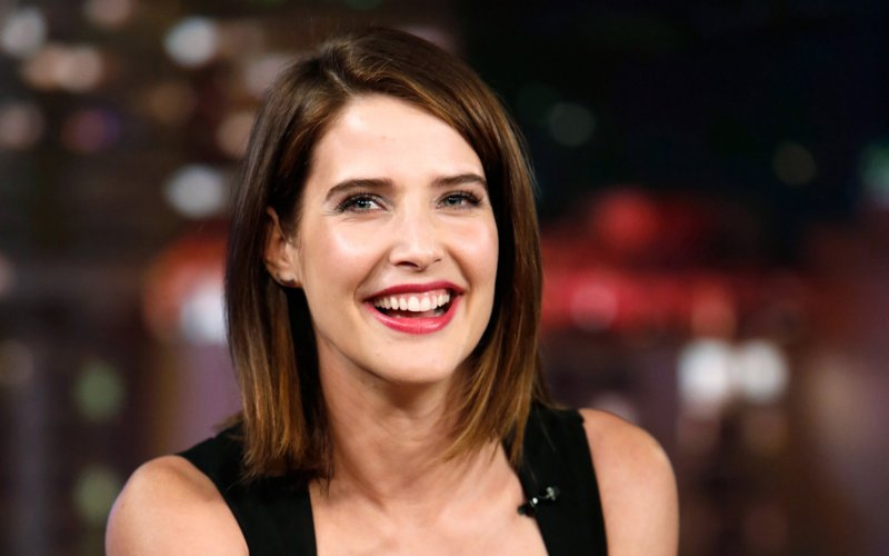 Cobie Smulders Cancer Movies Tv Shows Husband Biopic Bigwig Wiki